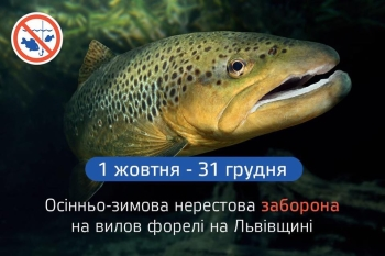 09_25_forel